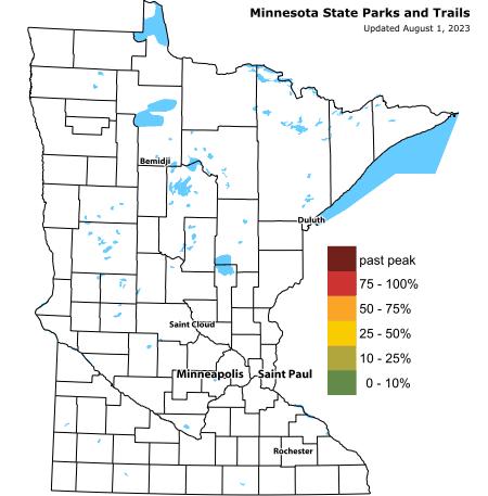 Fire  Minnesota